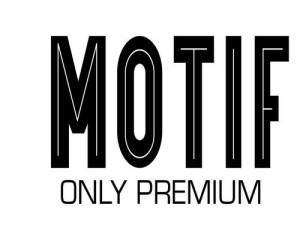 motif_ok_converted